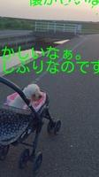 rakugaki_20140723113025513.jpg