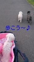 rakugaki_20140723112430920.jpg